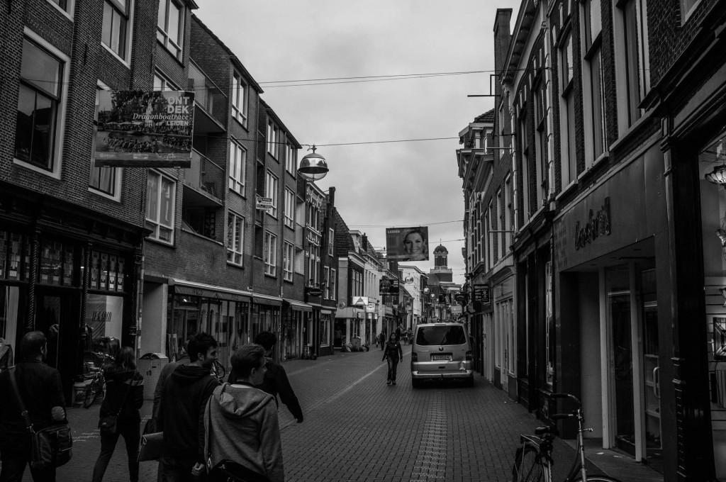 Walking through the City of Leiden